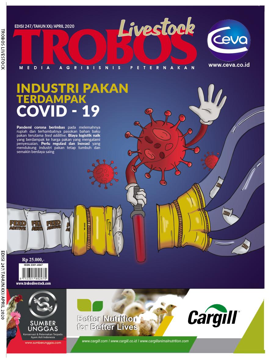 COVER Mj Trobos 247 1